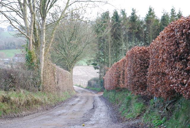 Lane to Lower Bridmore Farm