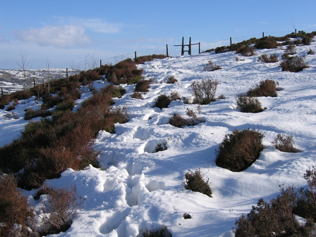Footpath from Garreg Lwyd
