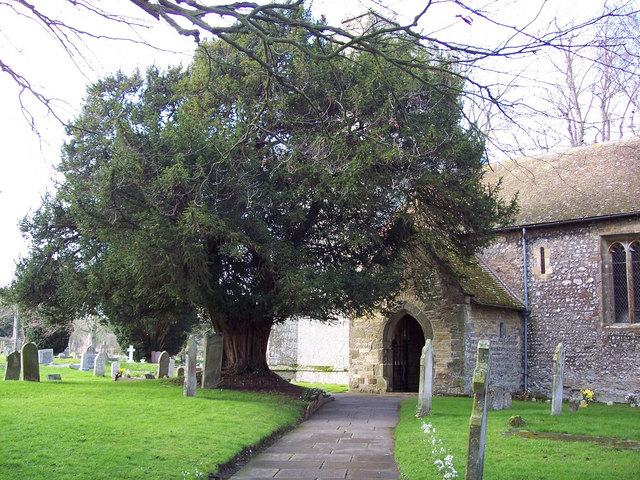 Church of the Holy Rood, Shillingstone - Porch