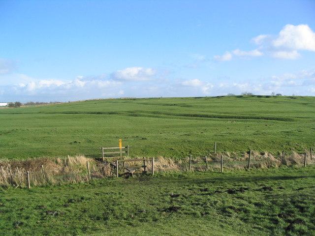 Old field patterns near Kirby Bellars