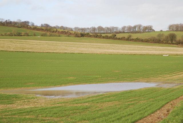 Norrington pond annexe