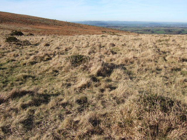 Moorland southeast of Routrundle