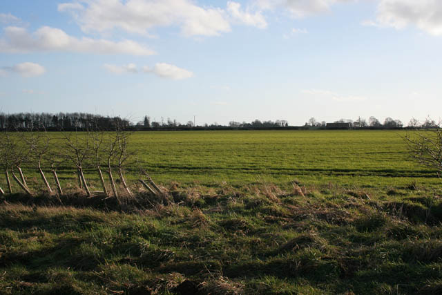 Farmland on Aunsby Road