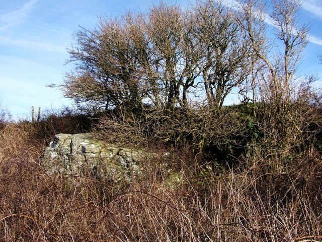 Small quarry by Walkhampton Footpath 6