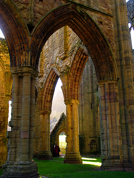 Encased in Gold: Tintern Abbey