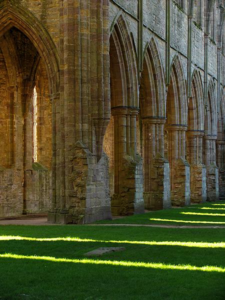 Abbey Arches: Tintern