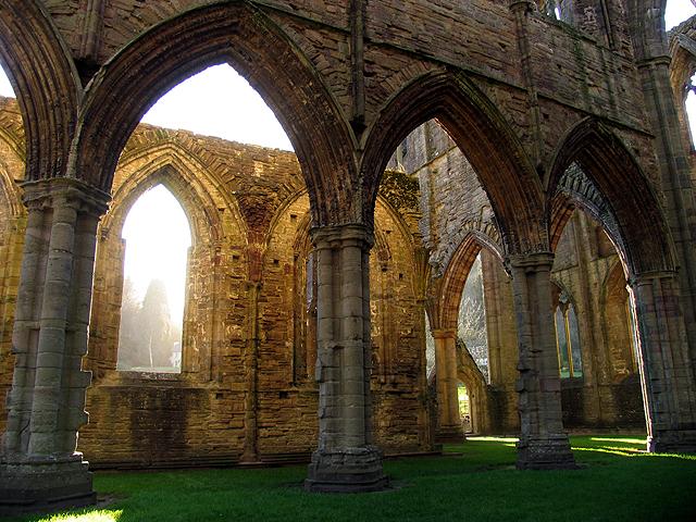Golden Glory: Tintern Abbey