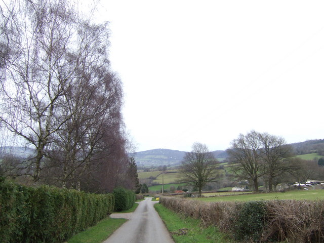 Lane down to Mitchel Troy
