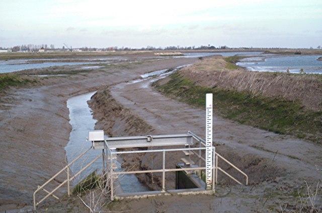 """""""New""""  wetland, Wallasea - Low tide"""