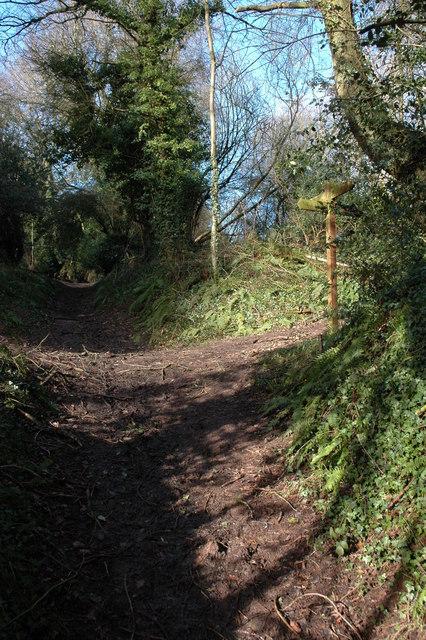 A junction of footpaths, Westhope