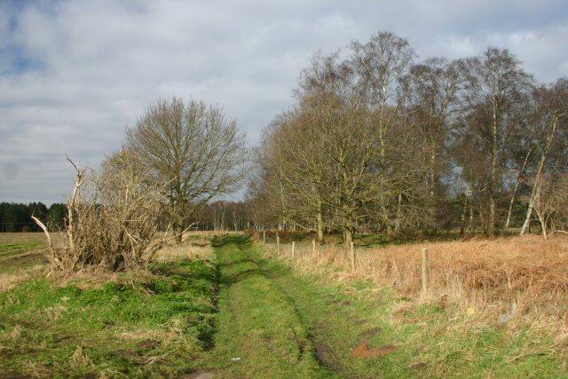 Track to Croxton Heath