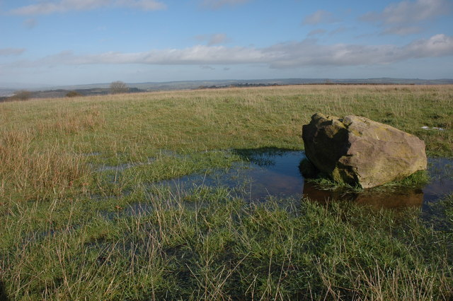 Boulder on Westhope Common