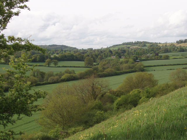 Farmland in the Cerne Valley