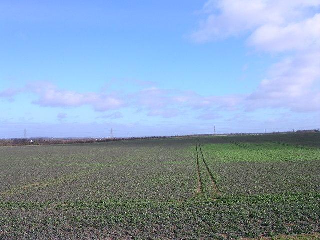 West Wratting Valley Farm