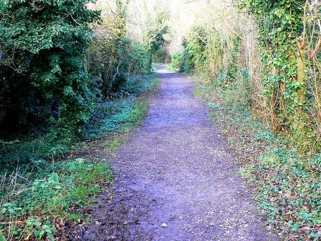Looking north along the Sustrans cycle path, Marlborough