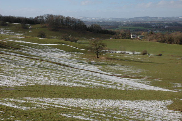 The northern slopes of Westhope Hill
