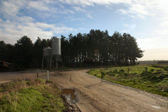 Kilverstone Heath
