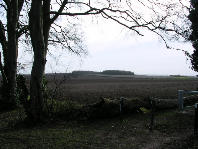 Meggs Hill from the Roman Road.