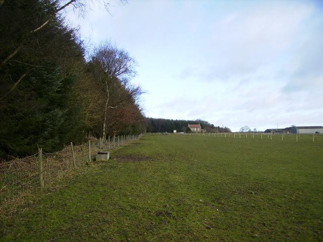 View across the farmland towards Pheasant Hill Farm