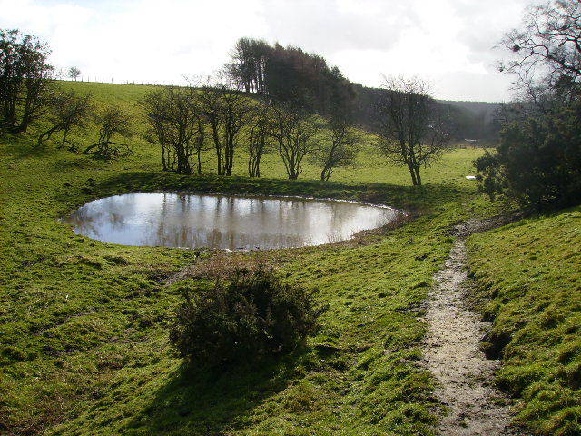 Pond south of Ebberston Common House