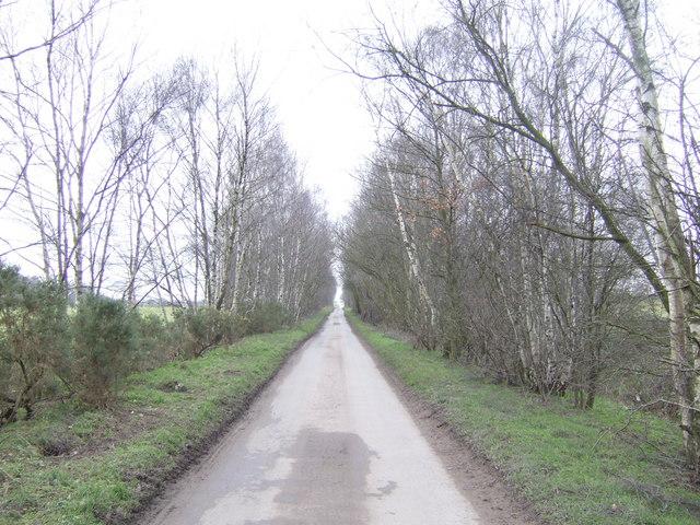 Black Bank Lane