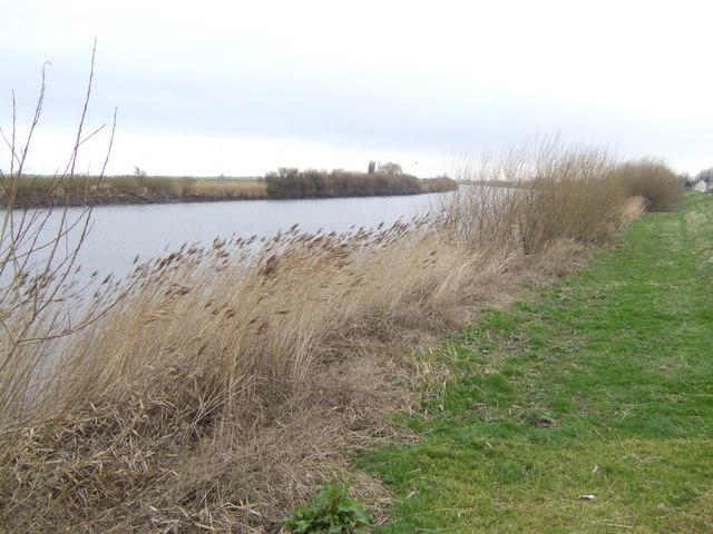 River Trent near Susworth