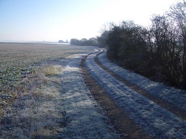 Milton Keynes Boundary Walk (III)