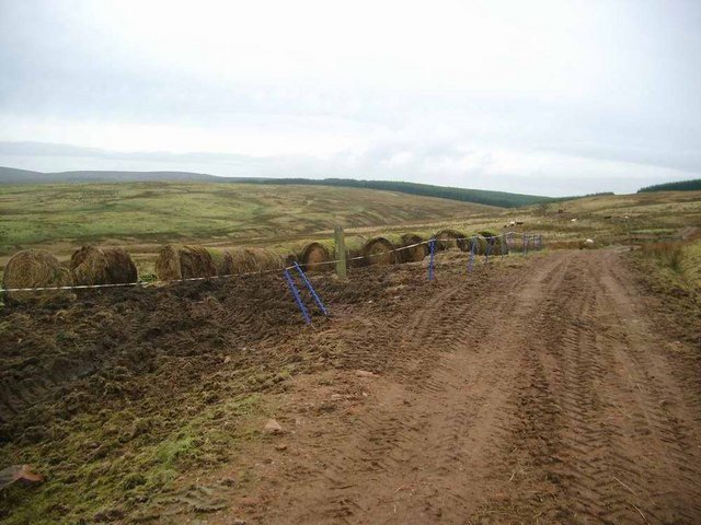 Bales of rushes and hill grass in use