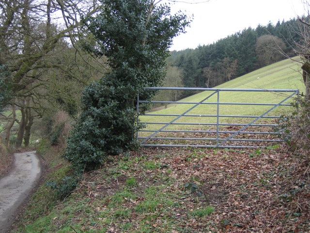 Field Gate and Forestry