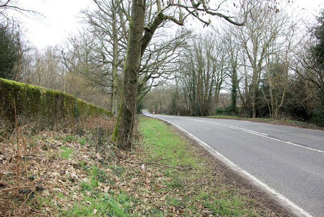 A 283 by Lodgefield Copse