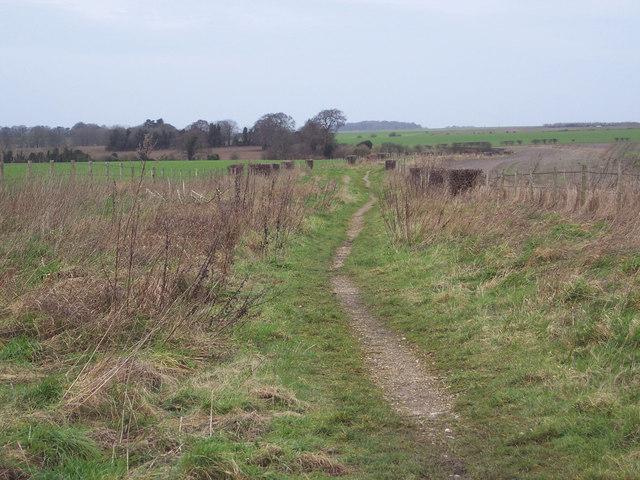 Bridleway from Hurdcott to Salterton