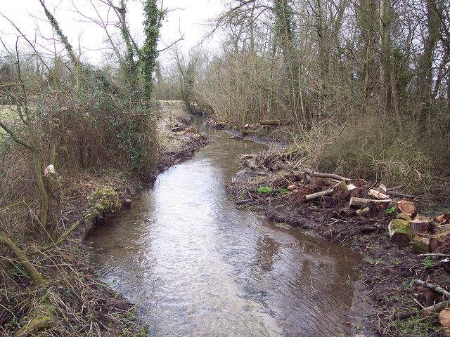 Cleared stream near Winterbourne Dauntsey