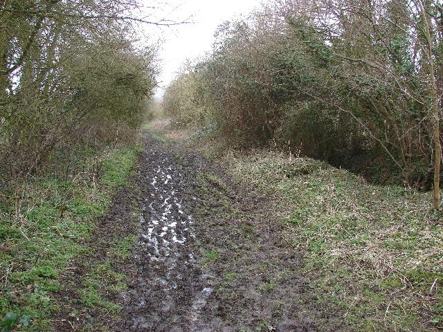 Bridleway to Polecat End