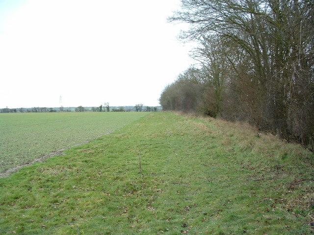 Wide Footpath