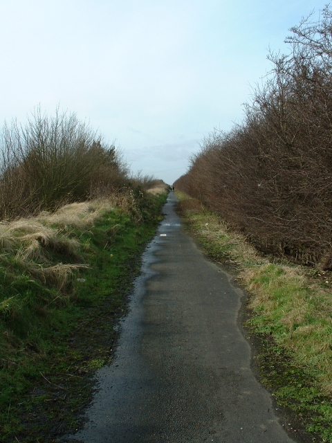 The Lynn Boards, near Sutton Bridge