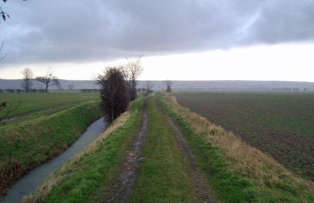 Carr Lane, Bonby