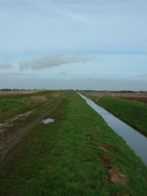 Drain and Track, Wingland Marsh