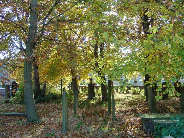 Sun dappled graveyard
