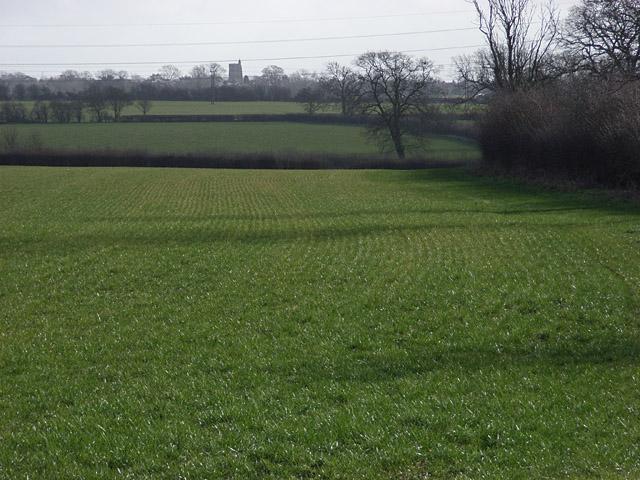 Farmland near Thornborough