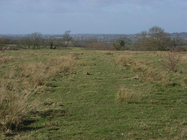 Pilch Field
