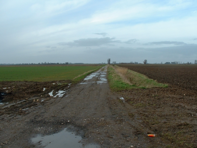 Track off Roman Bank, Terrington St Clement