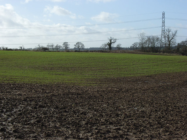 Farmland, Padbury