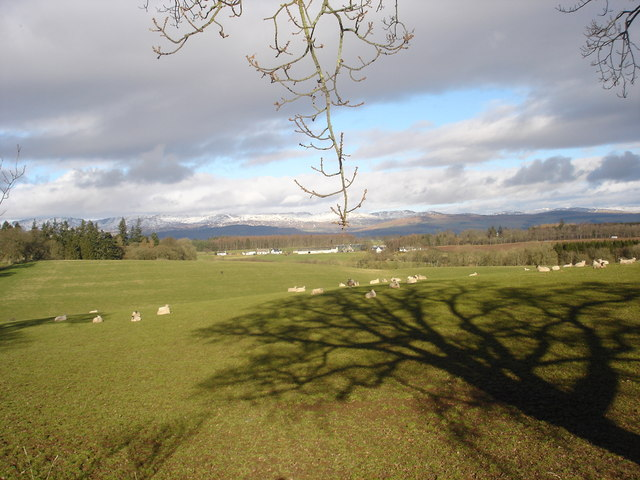 View north across fields ,Crofthead near Muthill