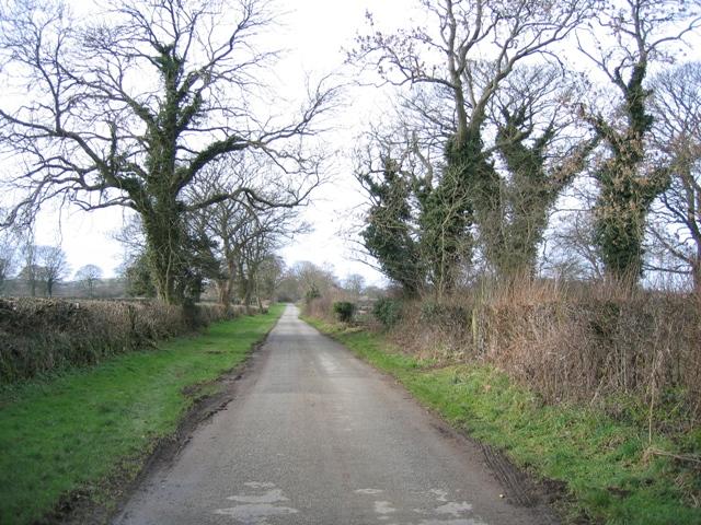 Minor Road towards Frith
