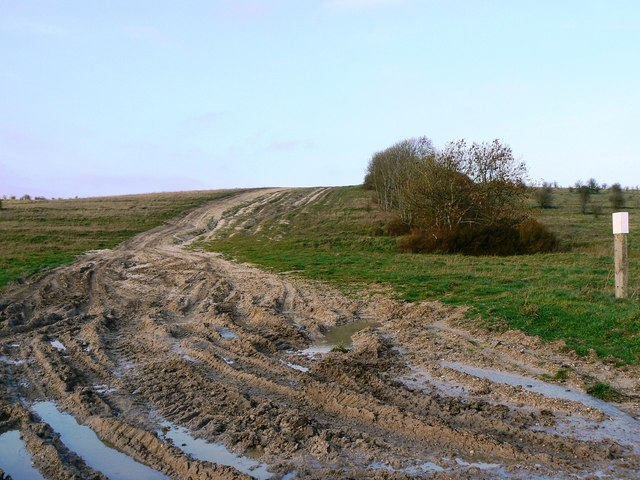 Start of a tank trail leading north from the Imber Road, Salisbury Plain