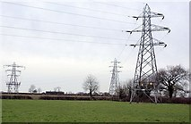 SK3231 : Pylons south of Hall Pastures Farm by Nikki Mahadevan