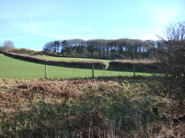 Peekhill Plantation from Princetown railway