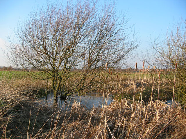 Small mere by railway line