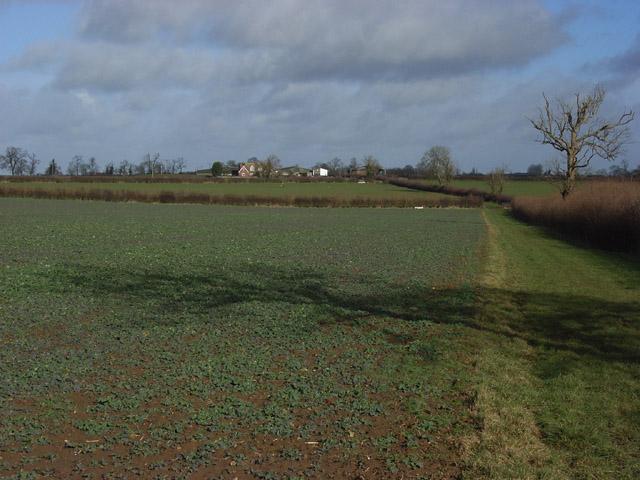 Farmland, Adstockfields