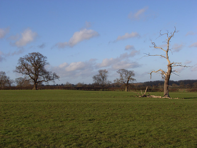 Pastures, Bourton Grounds